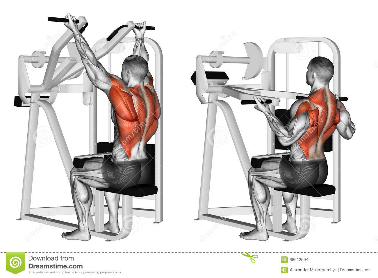 Exercising. Reverse Grip Machine Lat Pulldown Stock ...