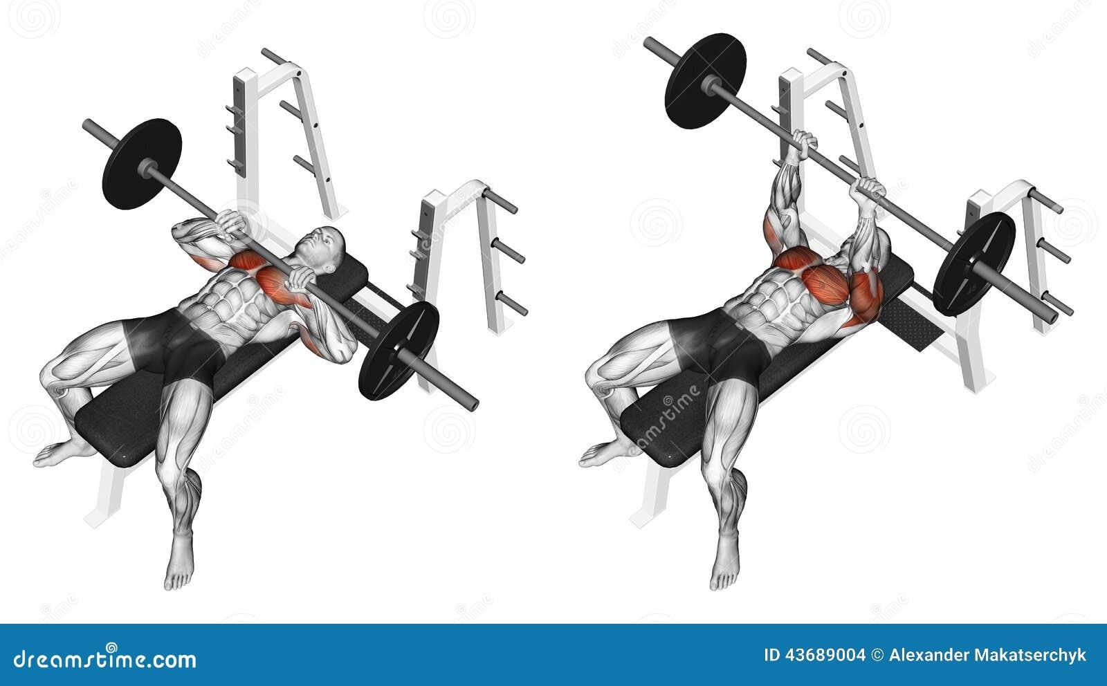 Exercising. Rod narrow grip bench press, lying on