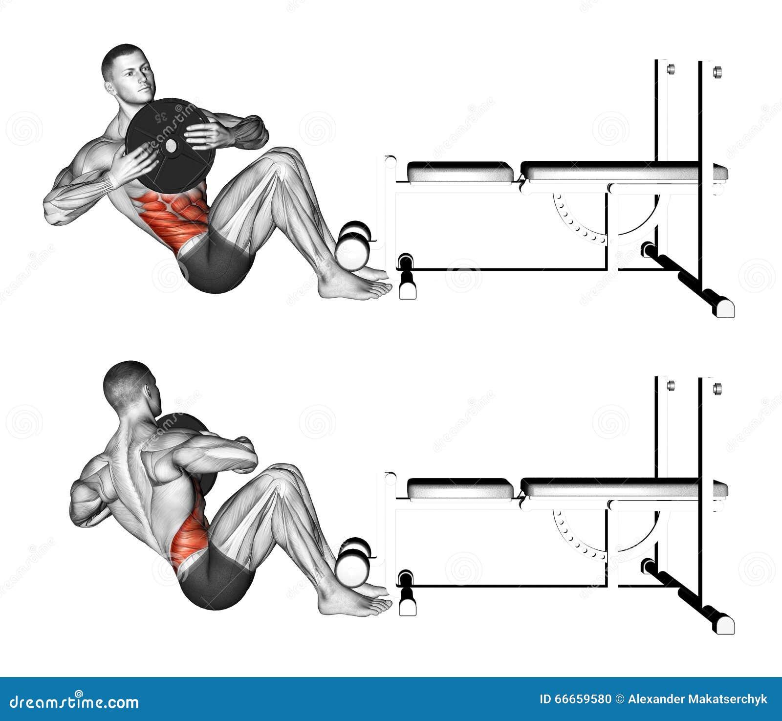 Exercising. Russian twist stock illustration. Illustration