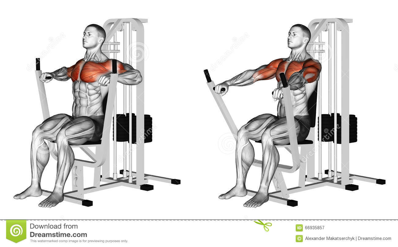Exercising. Seated Chests Press Stock Illustration