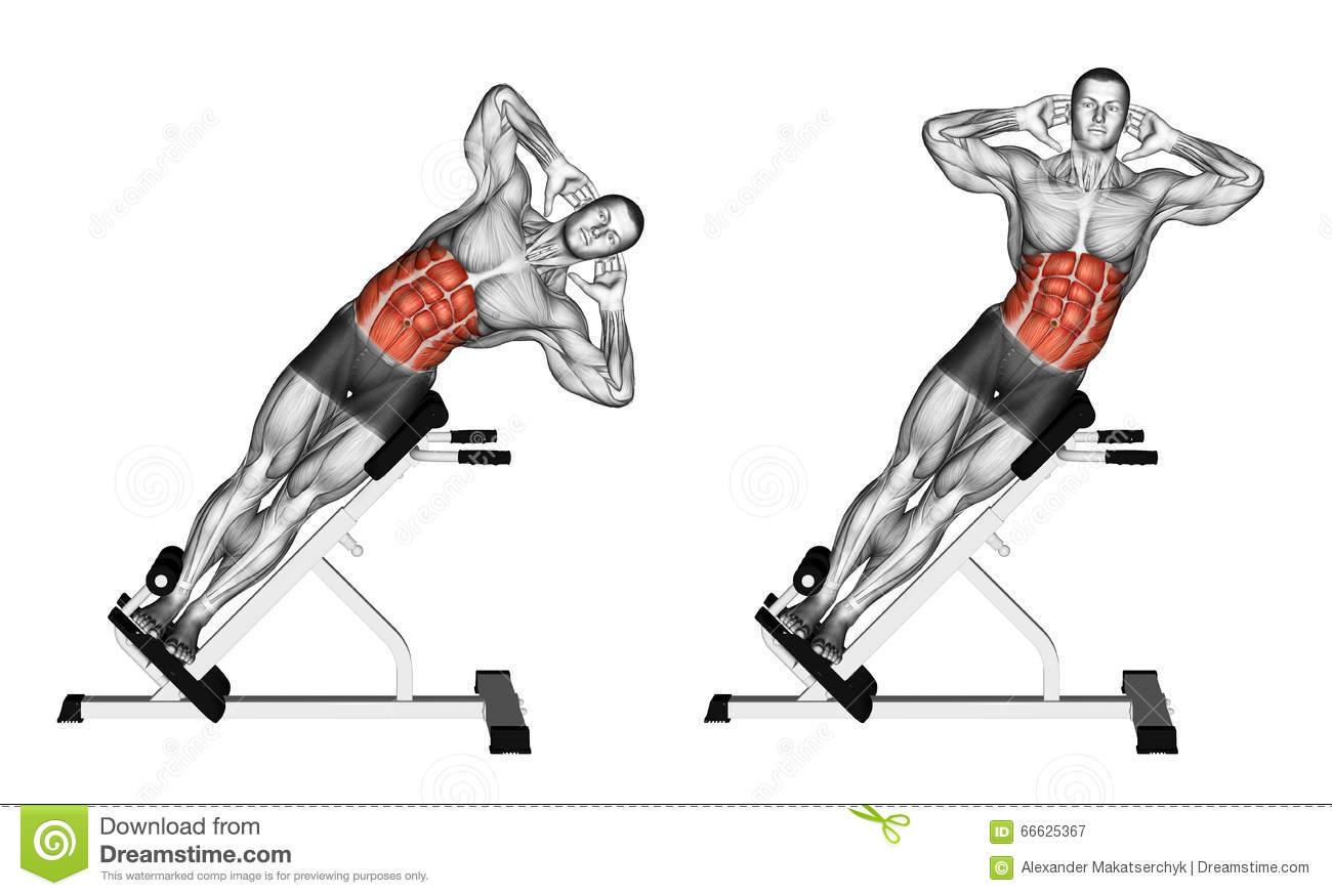 Exercising Side Bend On Bench Stock Illustration