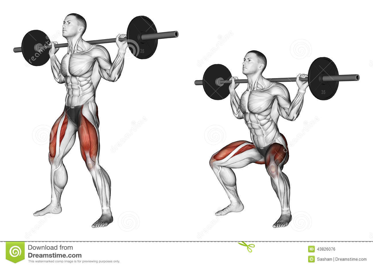 Fine Exercising Squats On The Shoulders Stock Illustration Gmtry Best Dining Table And Chair Ideas Images Gmtryco