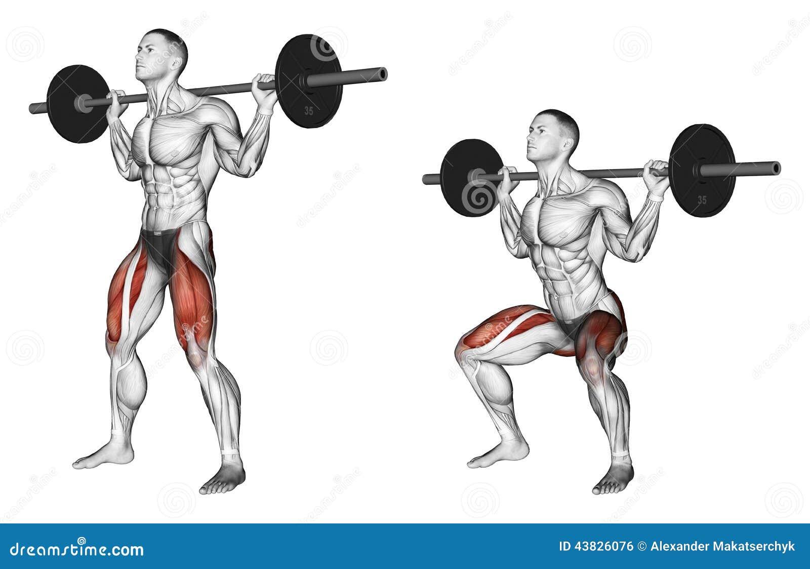 Excellent Exercising Squats On The Shoulders Stock Illustration Lamtechconsult Wood Chair Design Ideas Lamtechconsultcom