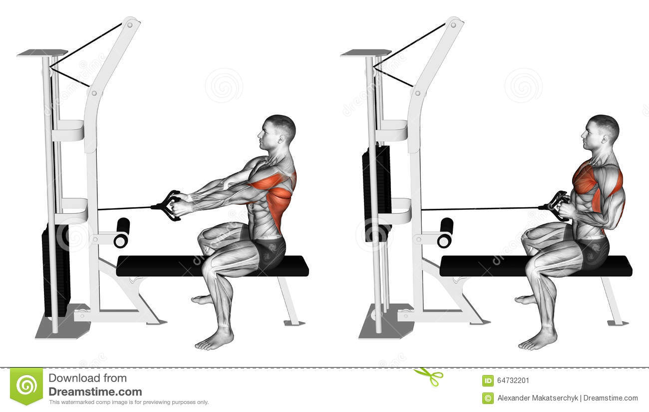 Exercising Thrust Block Simulator To Sitting On The Bench