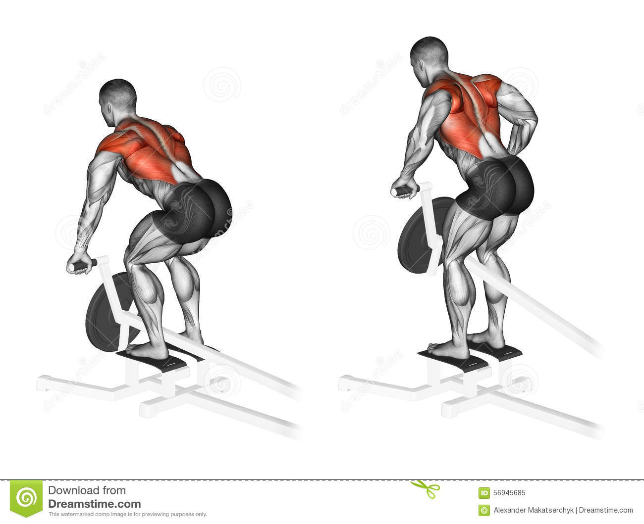 Exercising Thrust T Shaped On The Back Muscles In The Slope Stock