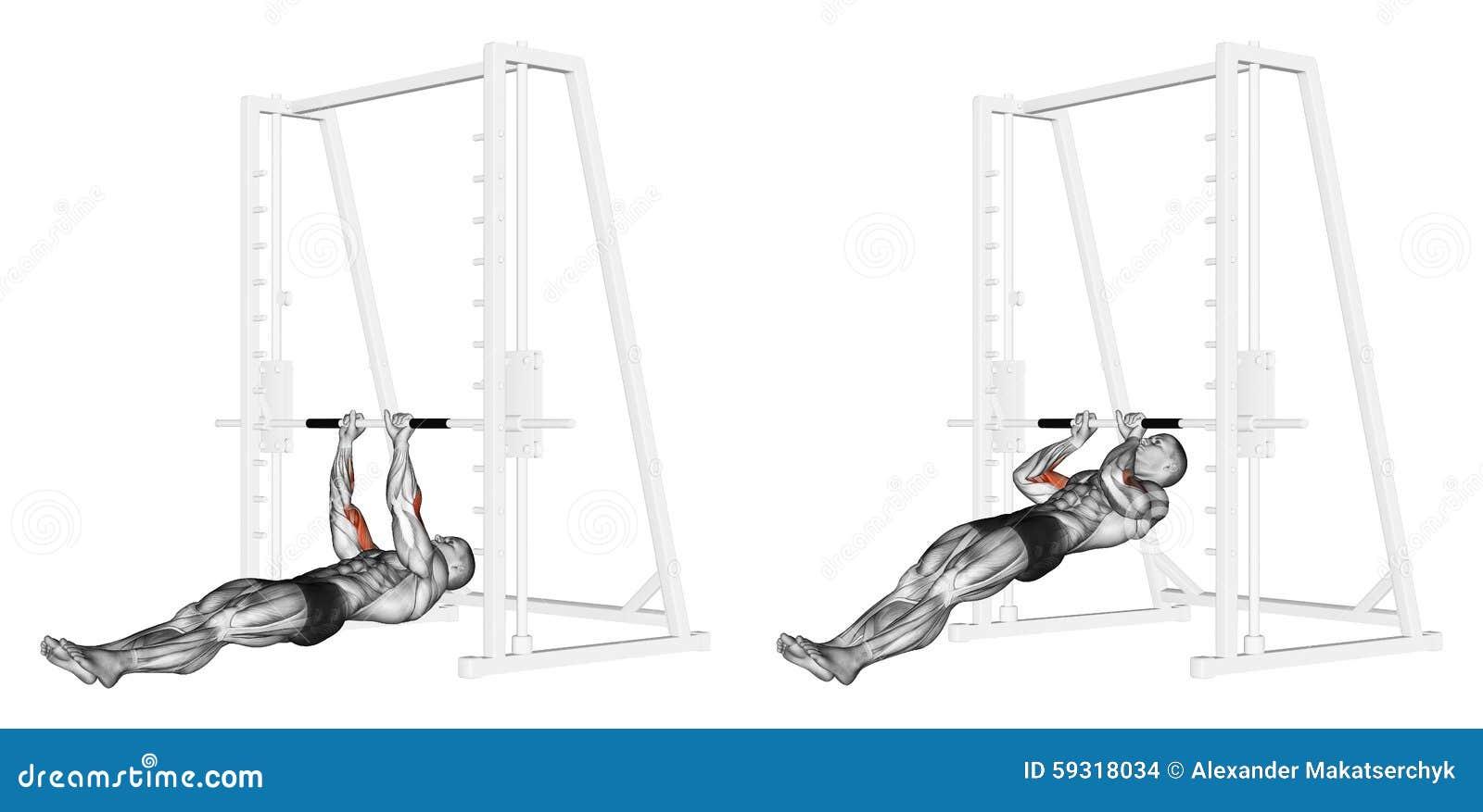 Exercising Tirón-UPS en los brachialis