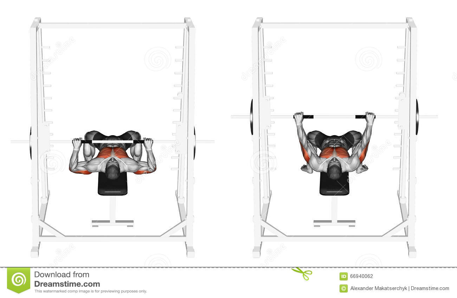 Incredible Exercising Vlak Smith Machine Bench Press Stock Illustratie Camellatalisay Diy Chair Ideas Camellatalisaycom