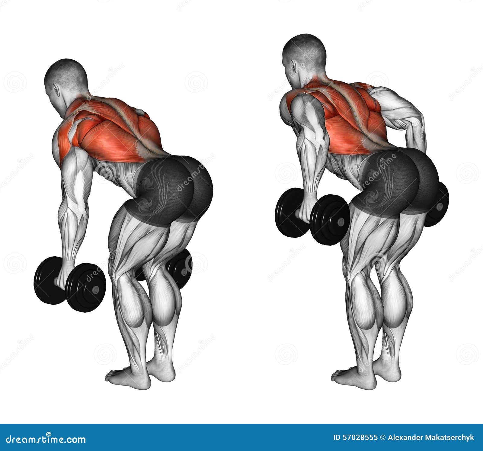Exercitar Pesos da pressão na inclinação