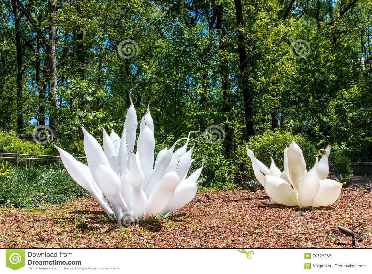 Download Exhibition Of Glass Artist Chihuly In Atlanta Botanical Garden  Editorial Photo   Image Of Exhibition