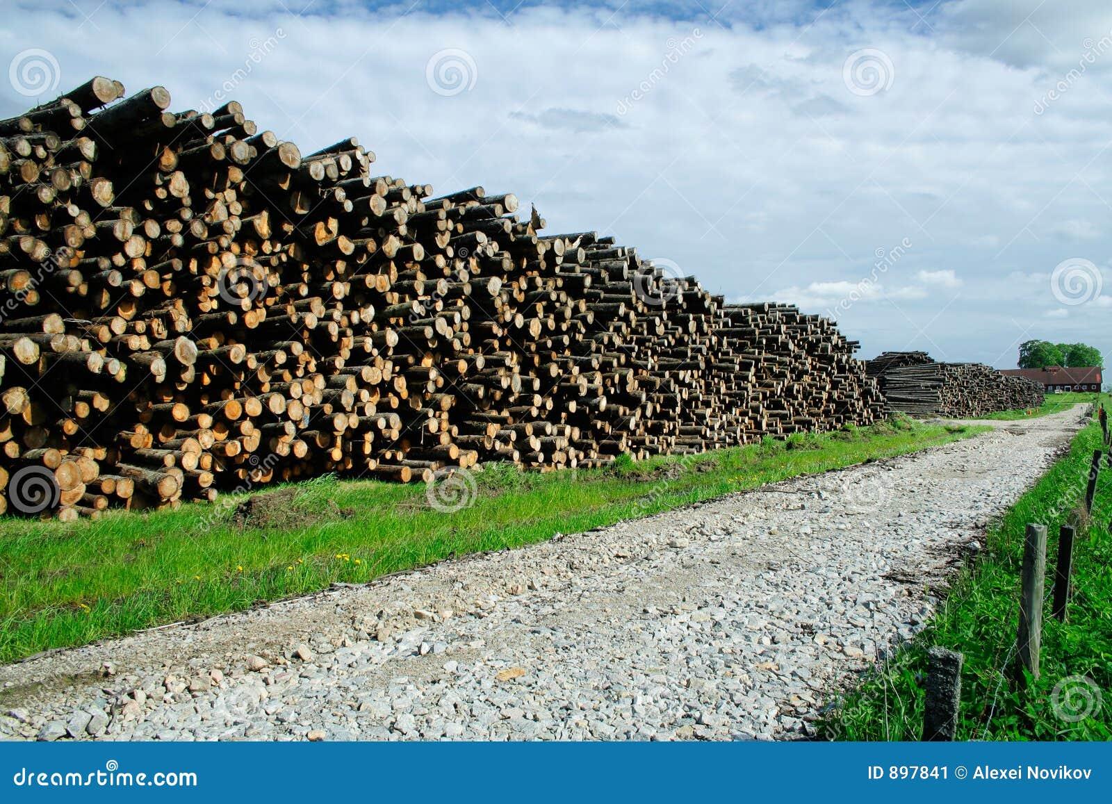 Existencias de la madera