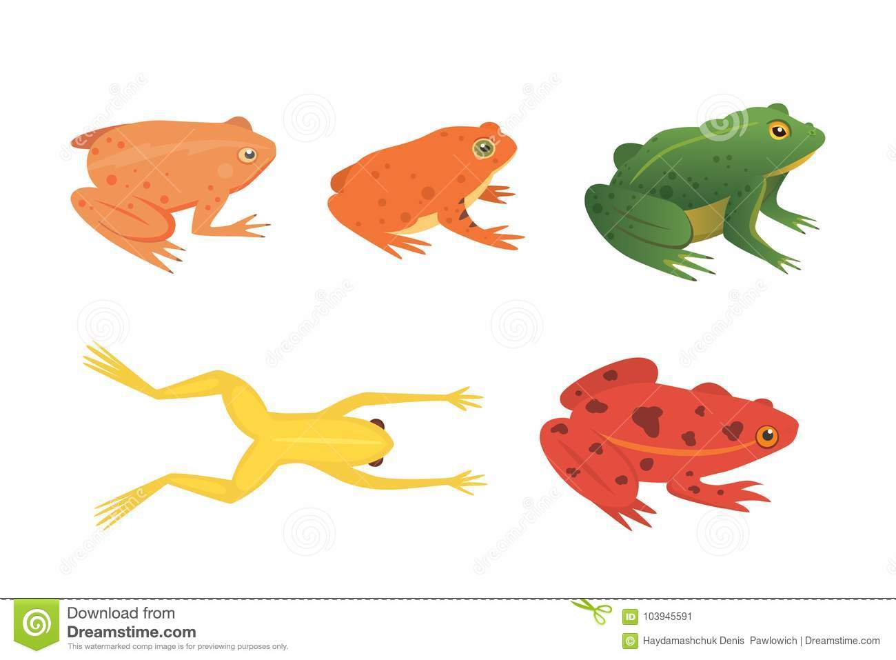 Exotic amphibian set. Frogs in different styles Cartoon Vector Illustration isolated. tropical animals