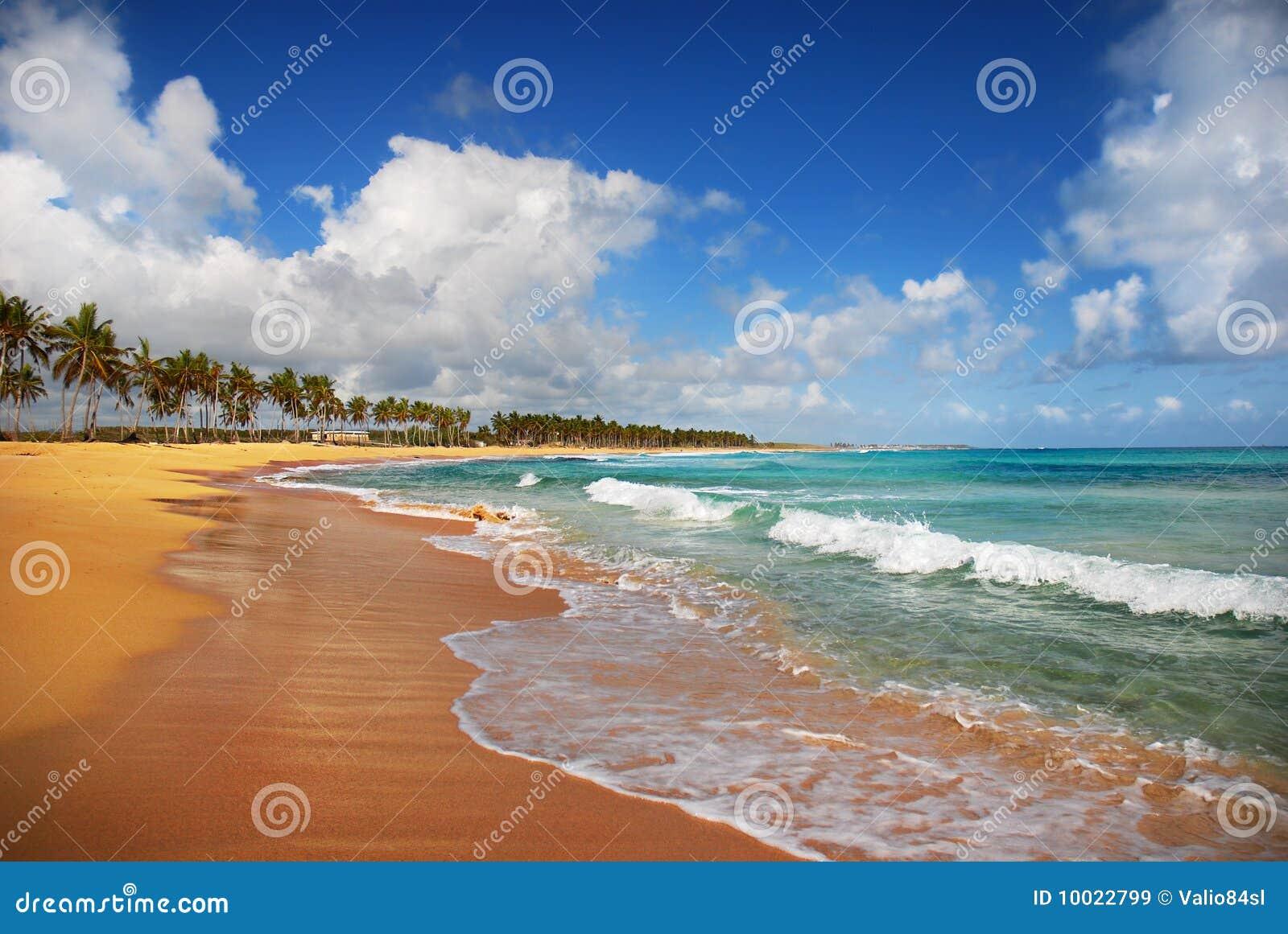 Exotic Beach in Punta cana