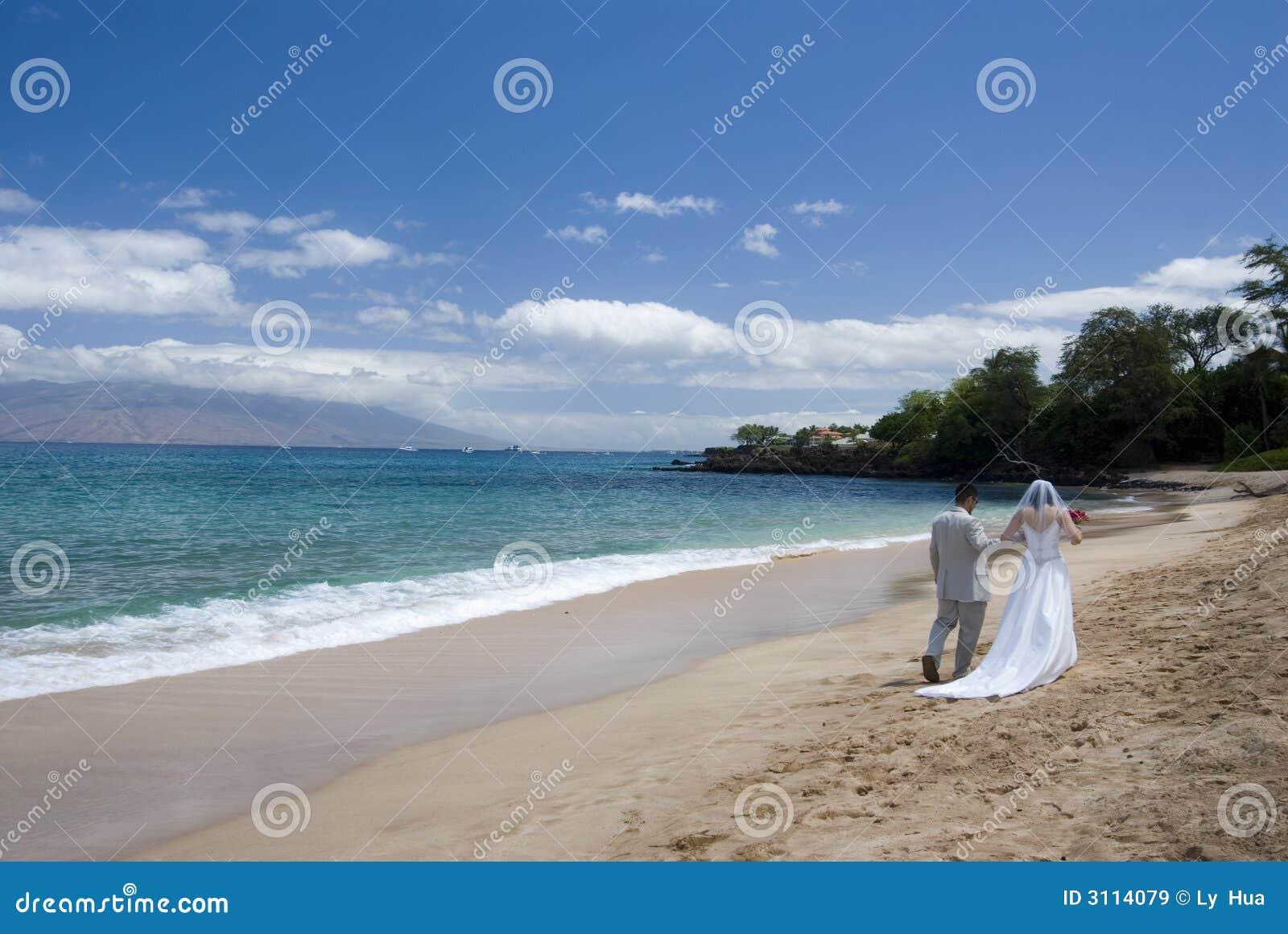 Exotic Beach Wedding Wide view