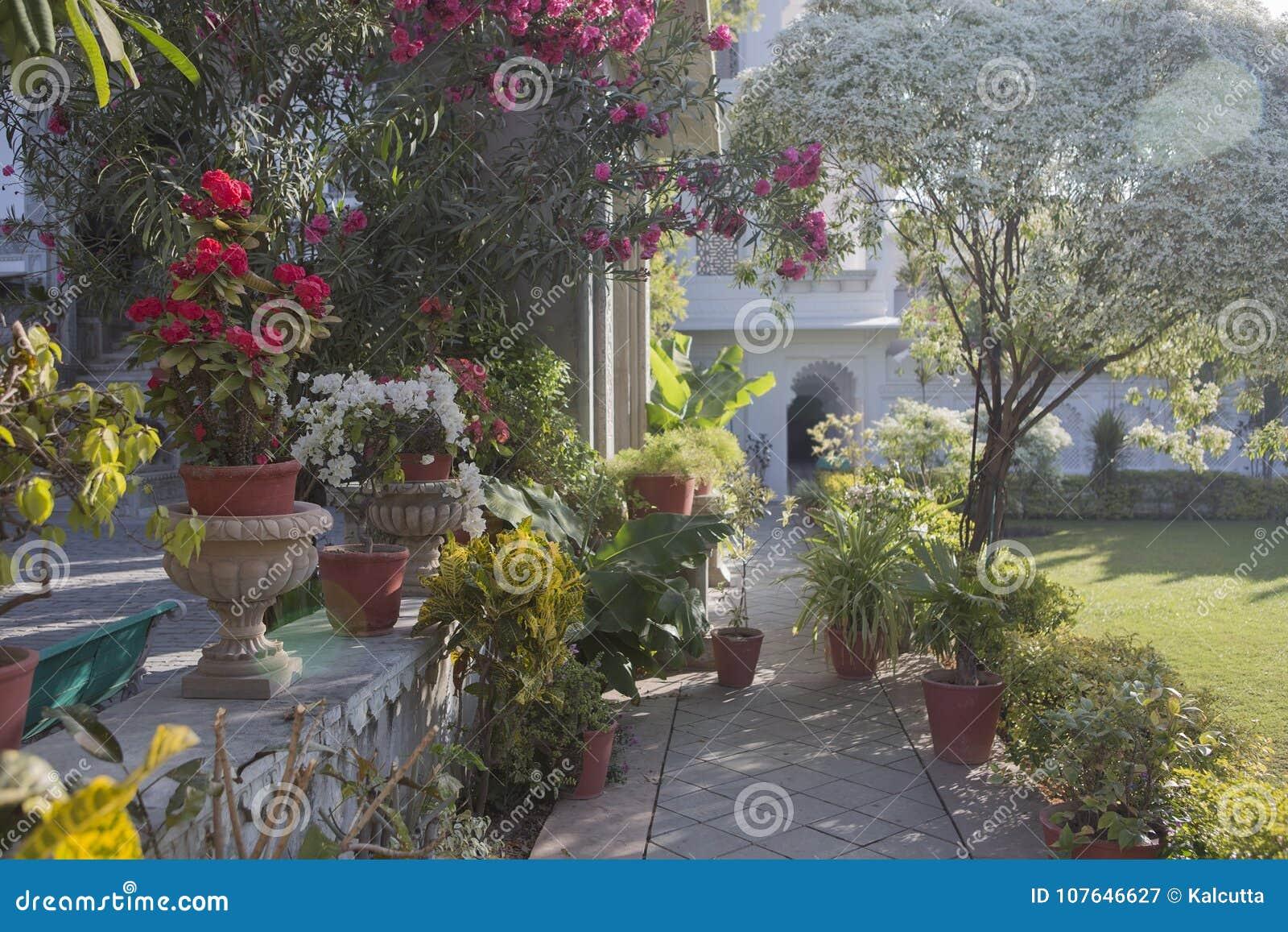 Exotic Designed Garden. Landscape Design Of The Indian Garden. Stock ...
