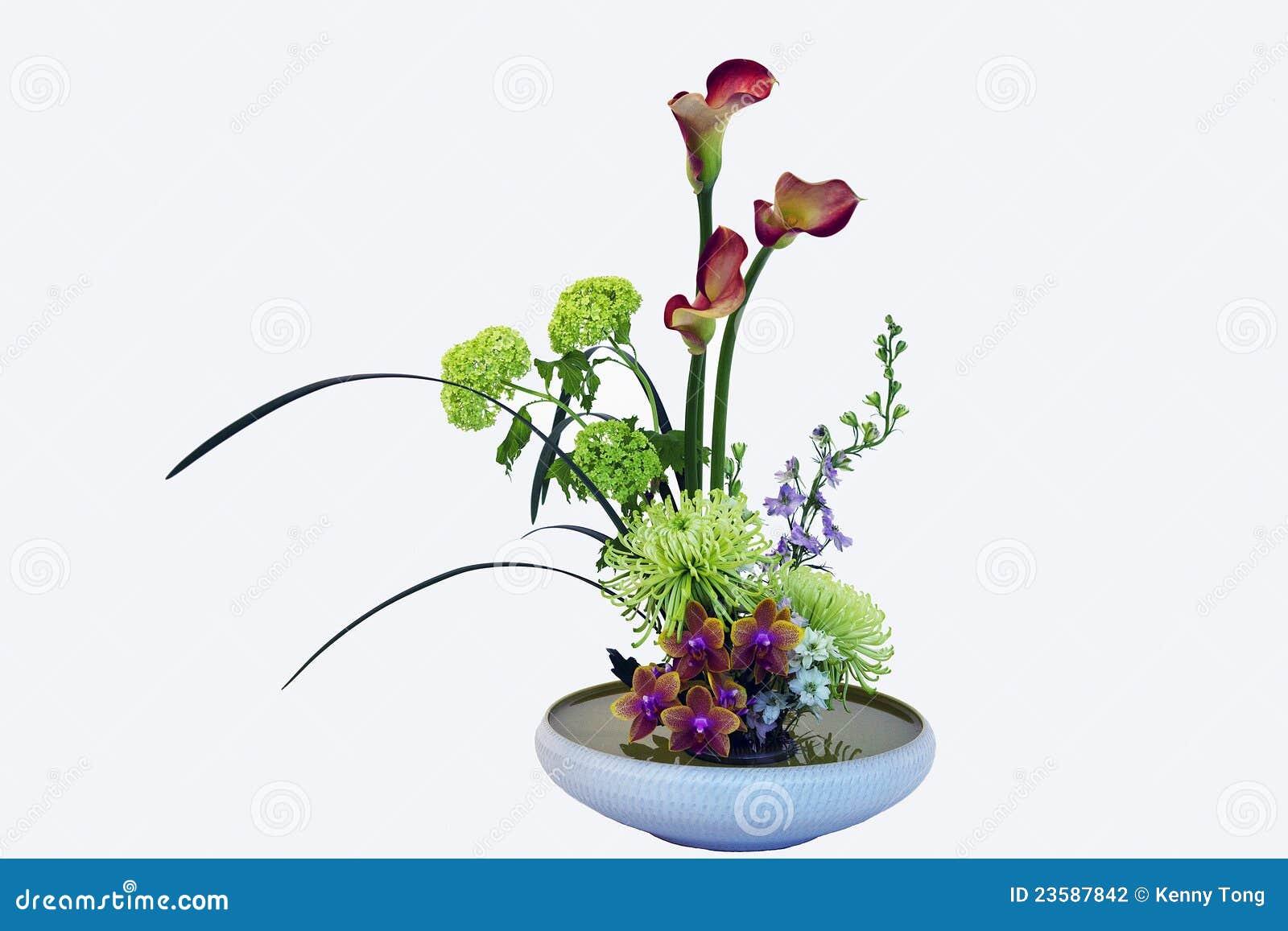 Exotic Flower Bouquet stock photo. Image of botanical - 23587842