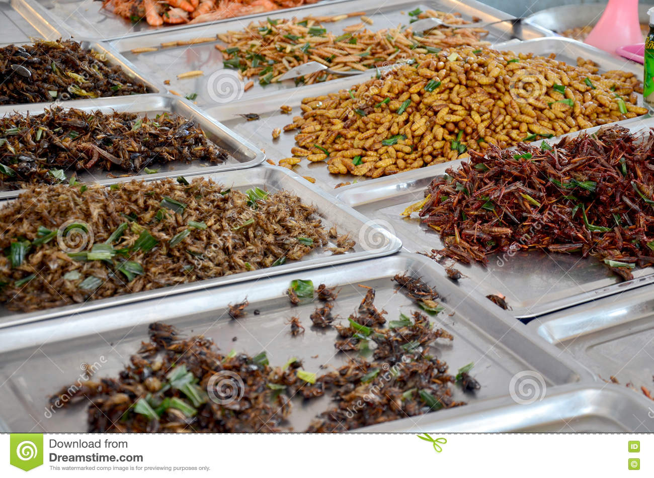 Exotic food fried Insect