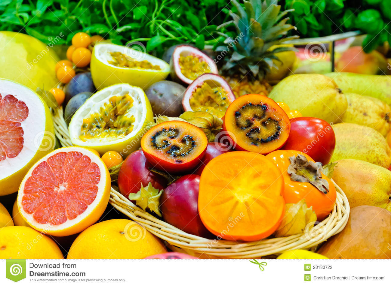 exotic fruits stock photo image of tropical assortment 23130722