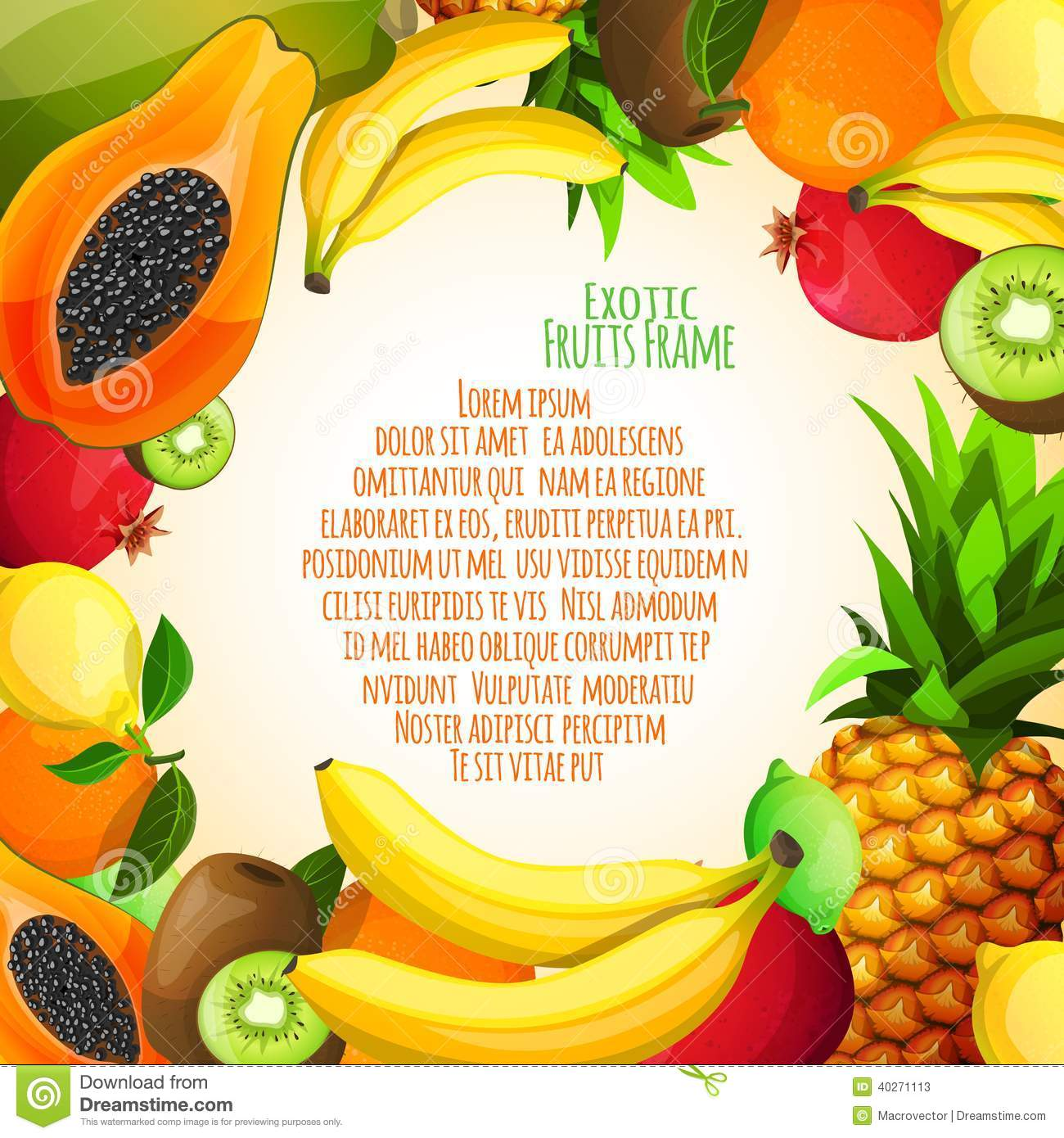 exotic fruits frame stock vector