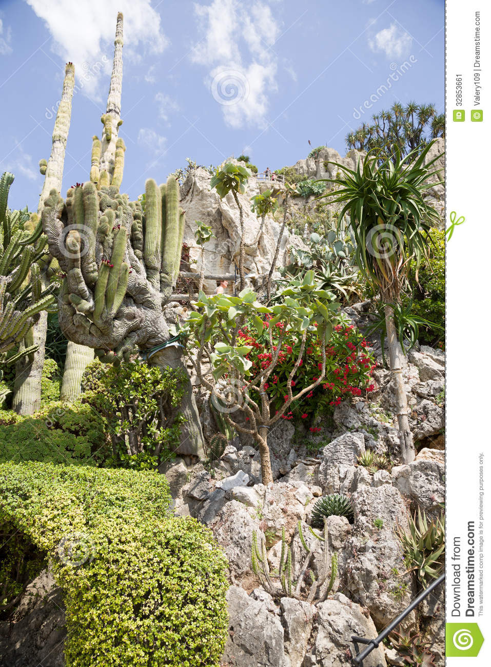 The exotic garden of monaco stock image image 32853661 for Jardin exotique monaco