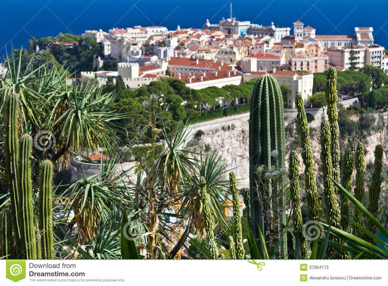Exotic garden from monaco stock photos image 37064173 for Jardin exotique