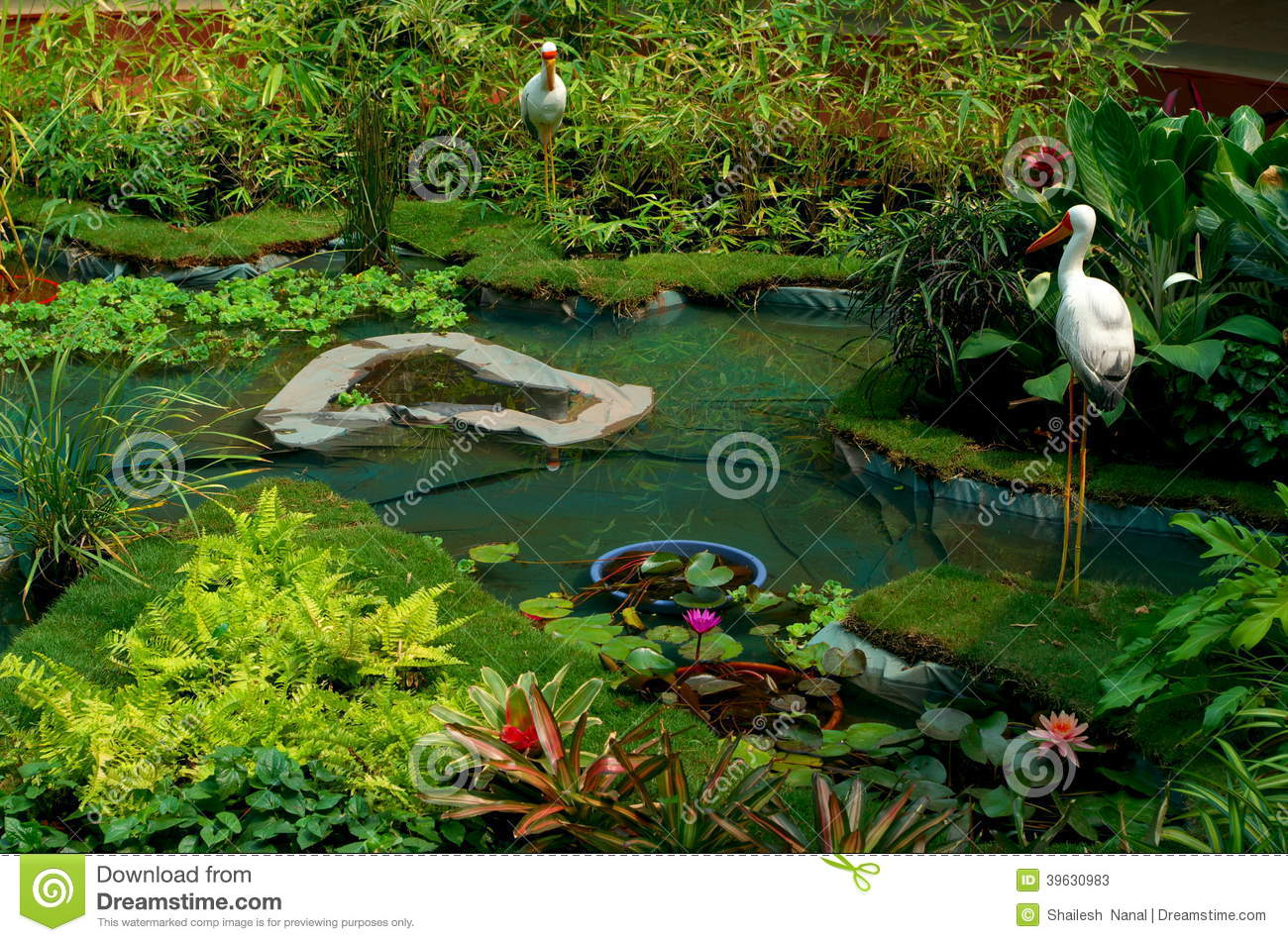 Exotic garden scene stock photo image 39630983 for Artificial plants for outdoor ponds