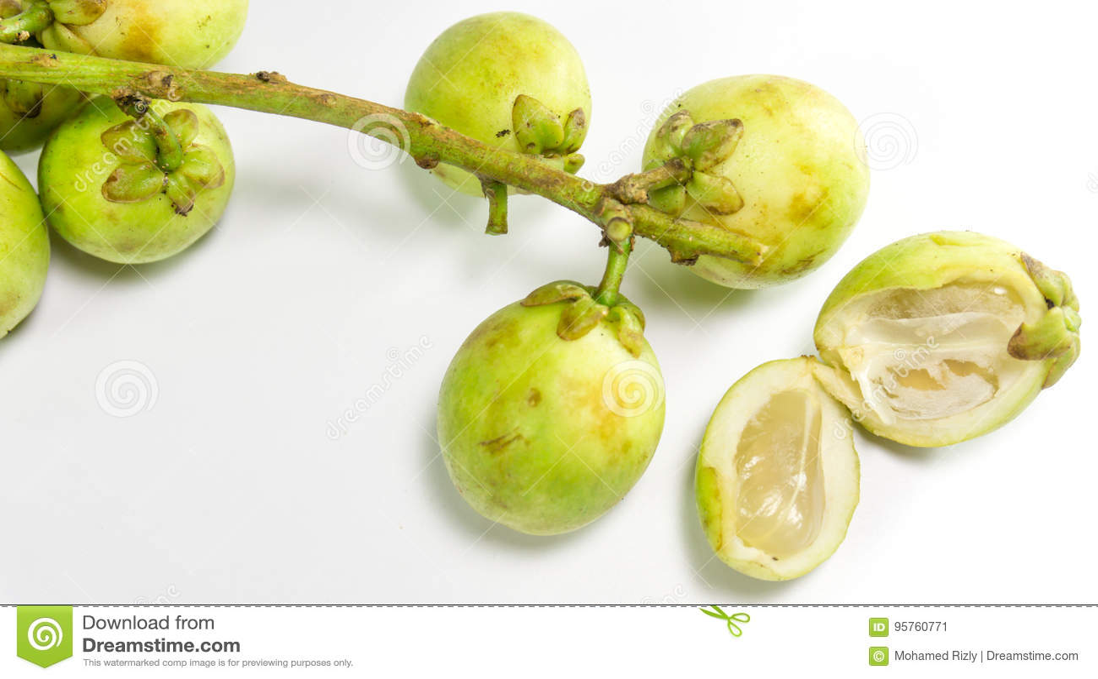Longkong, Langsat or Lanzones fruit is endemic to Southeast Asia/ Gadu guda,