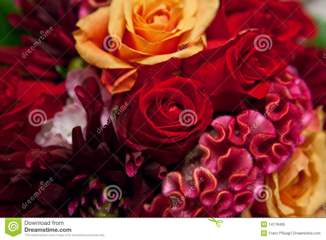 bouquet of exotic roses. stock vector  image, Beautiful flower