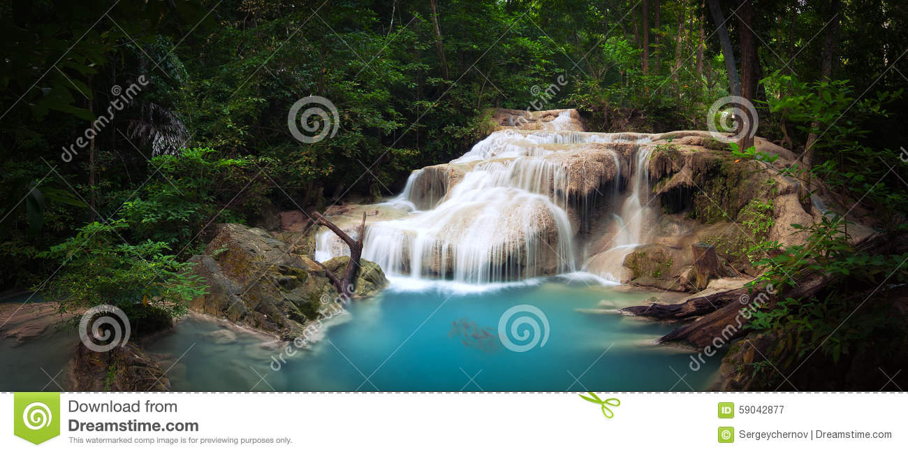 Tropical Jungle Trees And Fresh Water Stream Cartoon