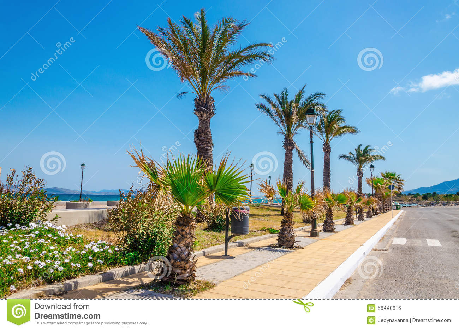 Palm Coast Dating Sites