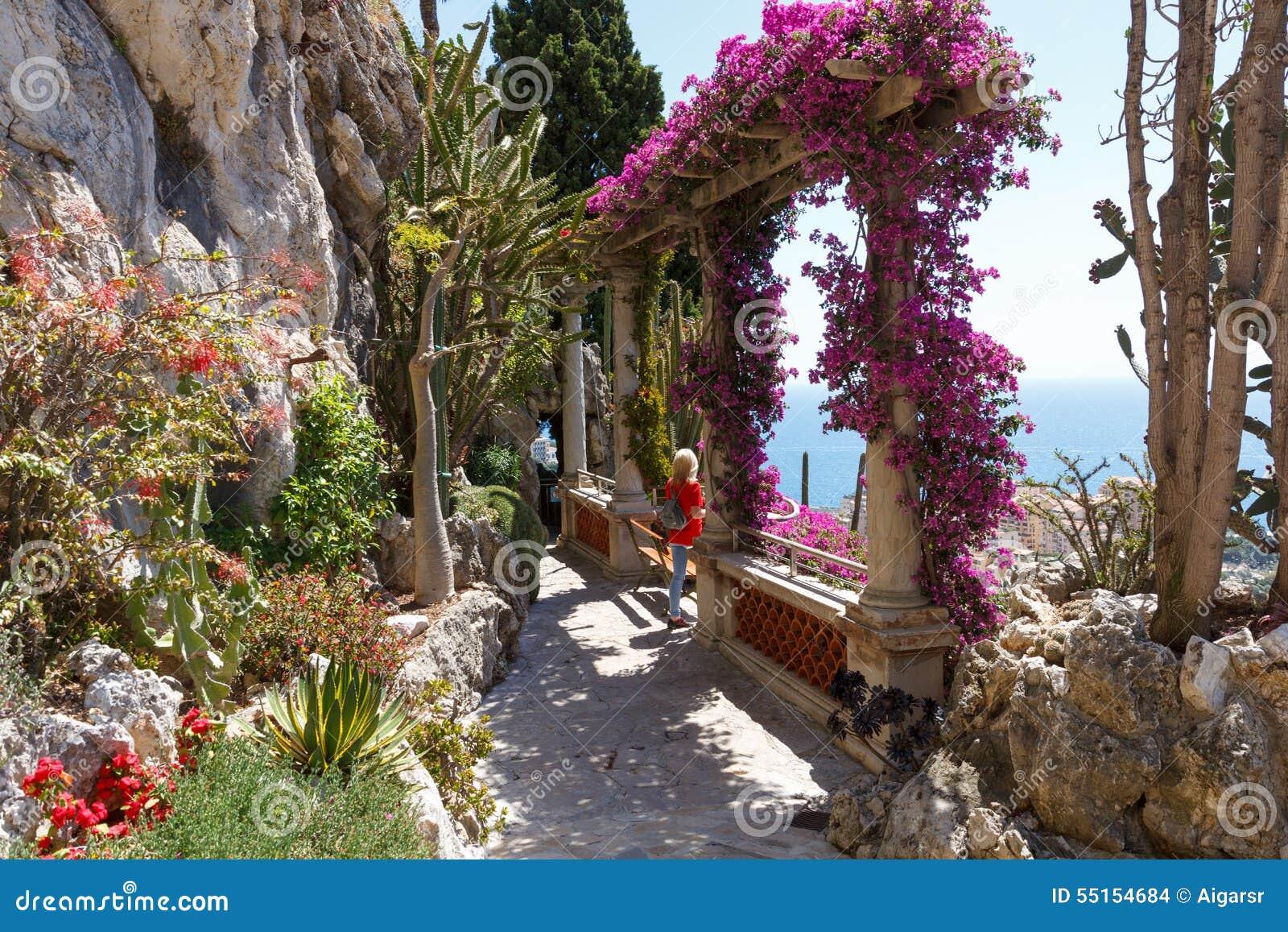 Exotischer Garten Von Monaco Stockfoto Bild Von Blume Himmel