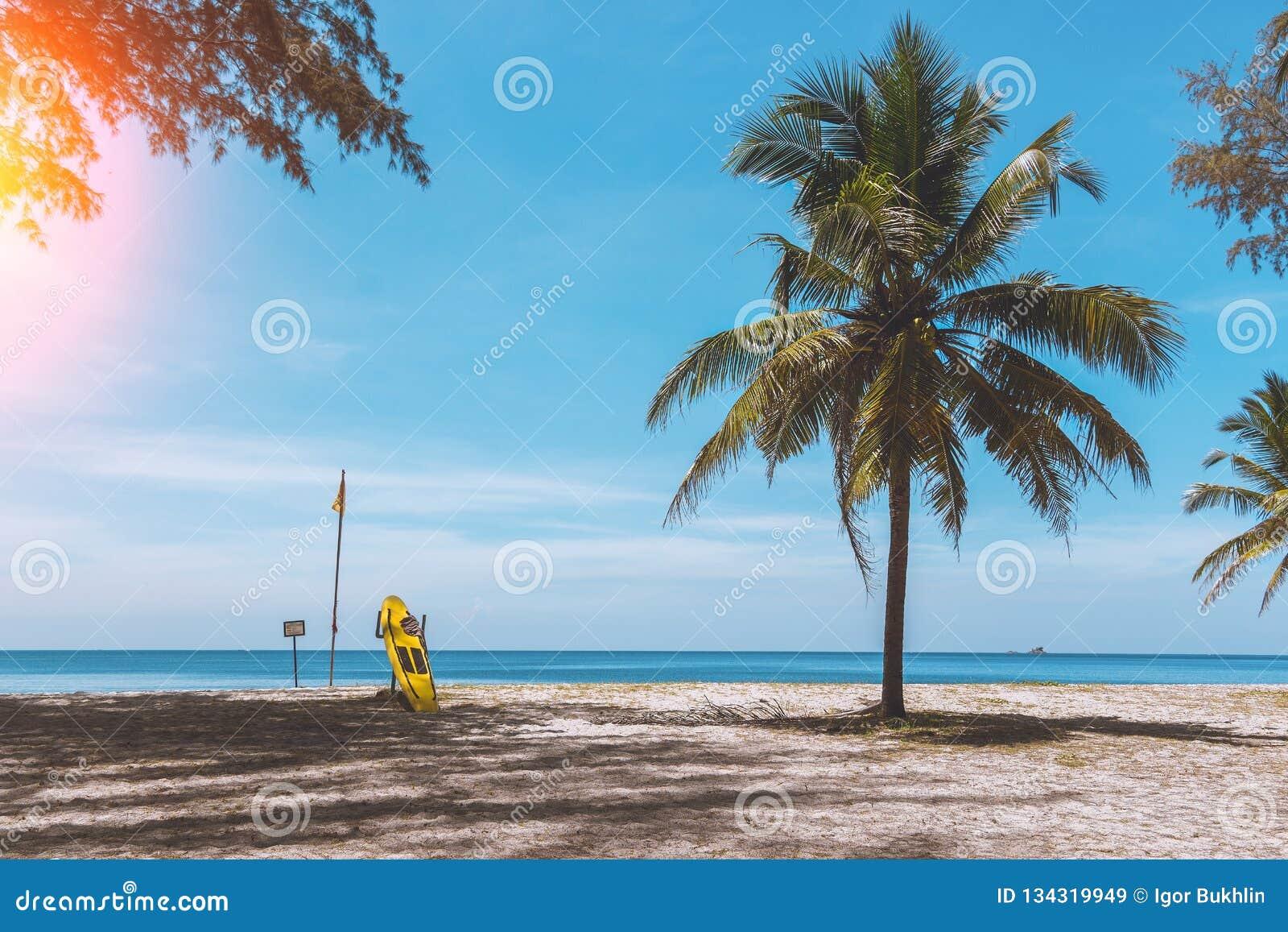 Exotisk strand i Thailand för att surfa Paradise kopplar av