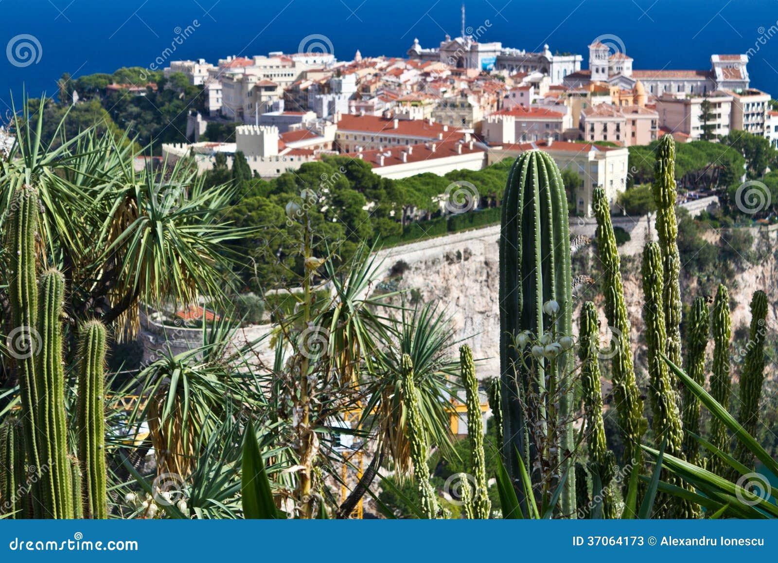 Exotisk trädgård från Monaco