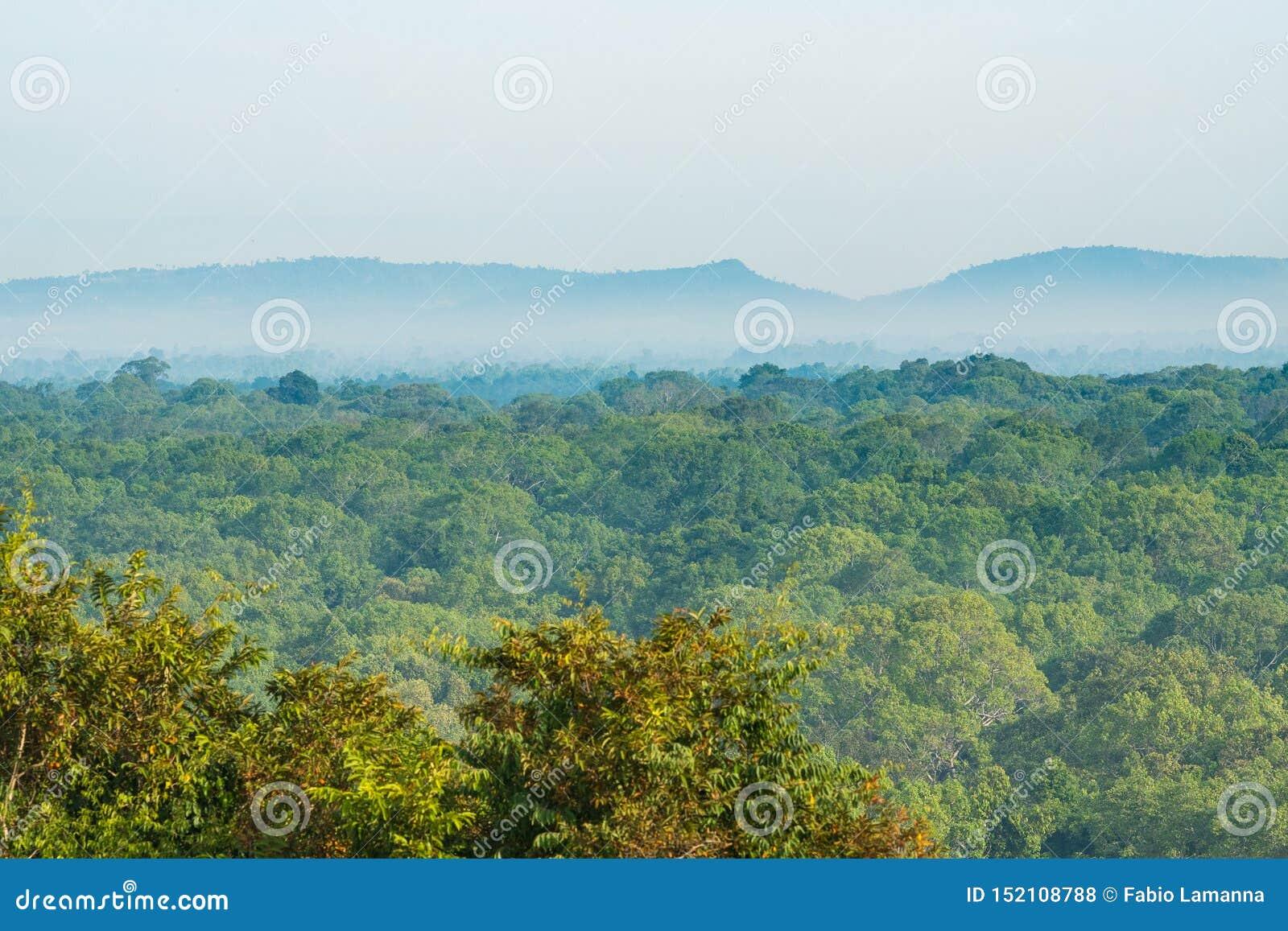 Expansivt landskap för Rainforest i Cambodja Mist och dimma under kullen och bergskedja på horisonten