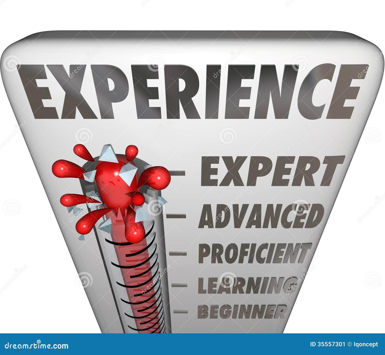 experience measurement expert to novice level stock illustration
