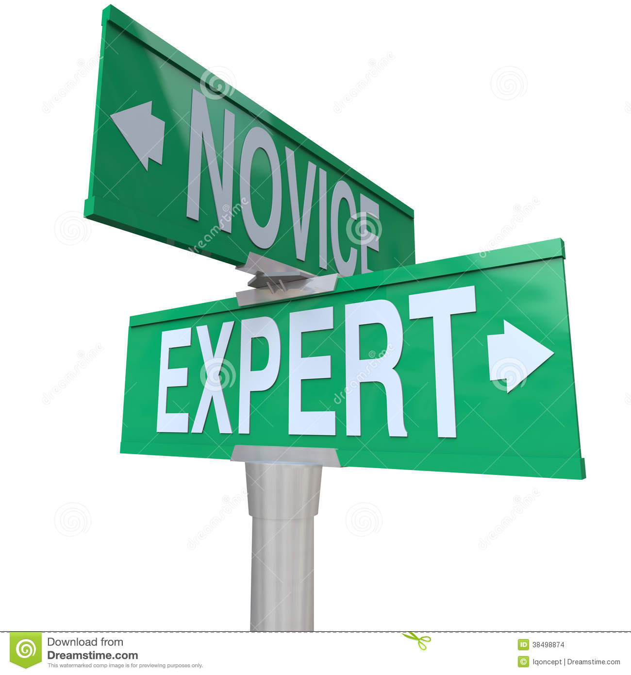 expert vs novice two way road sign skills experience