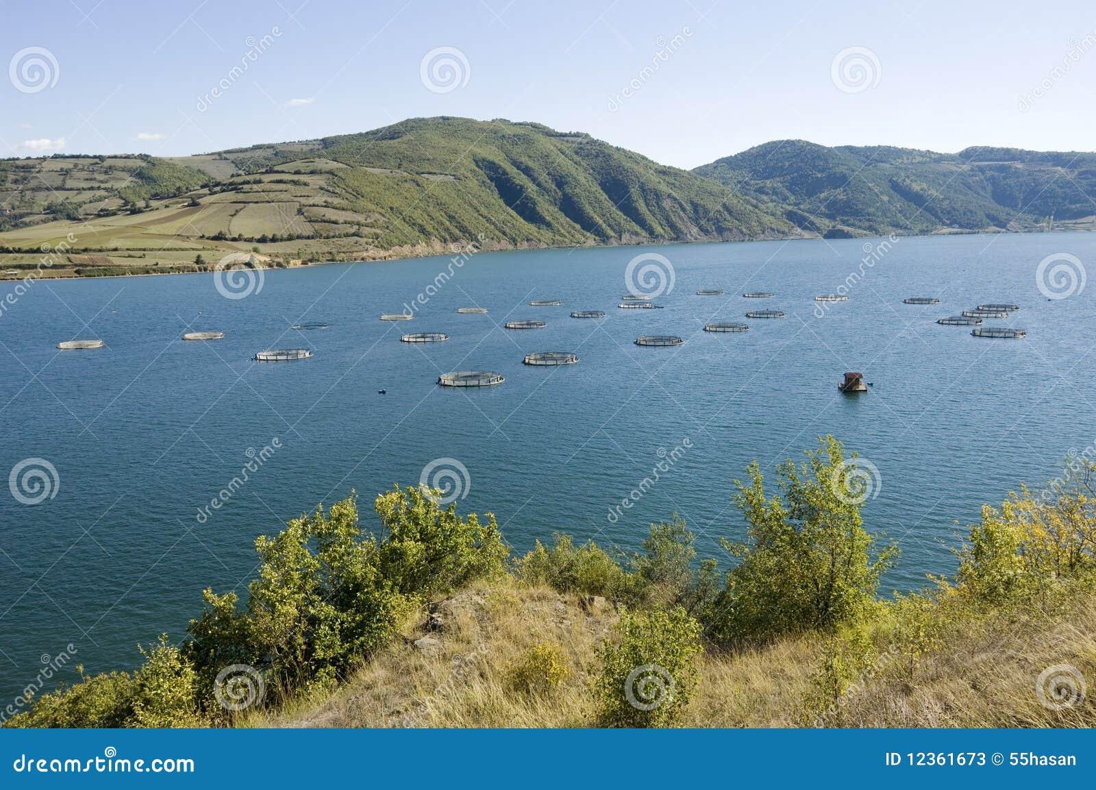 Exploitation de pisciculture. La Turquie-Samsun