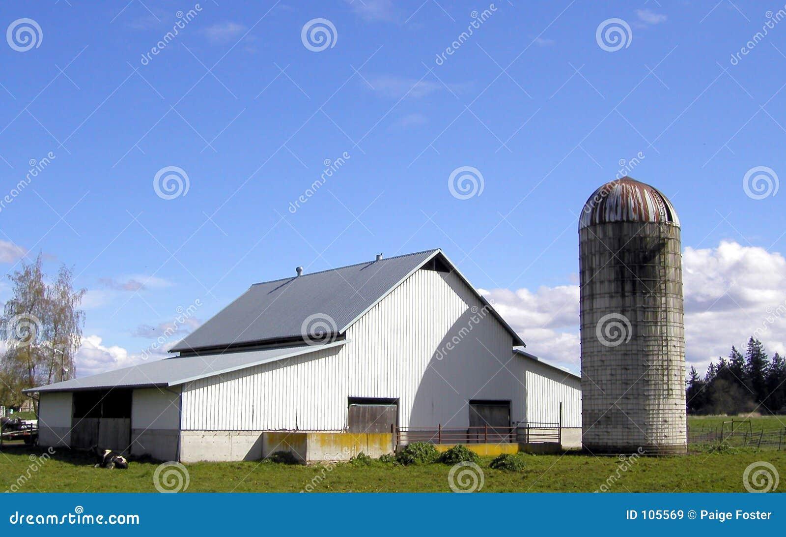 Exploração agrícola branca