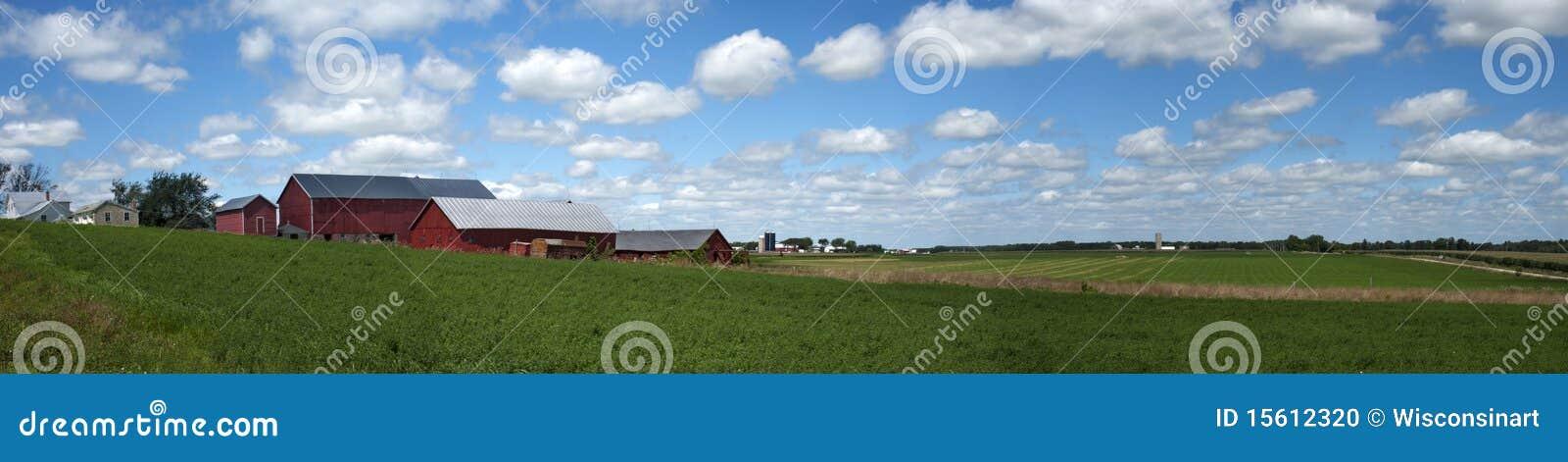Exploração agrícola de leiteria velha, bandeira do panorama da terra, colheitas