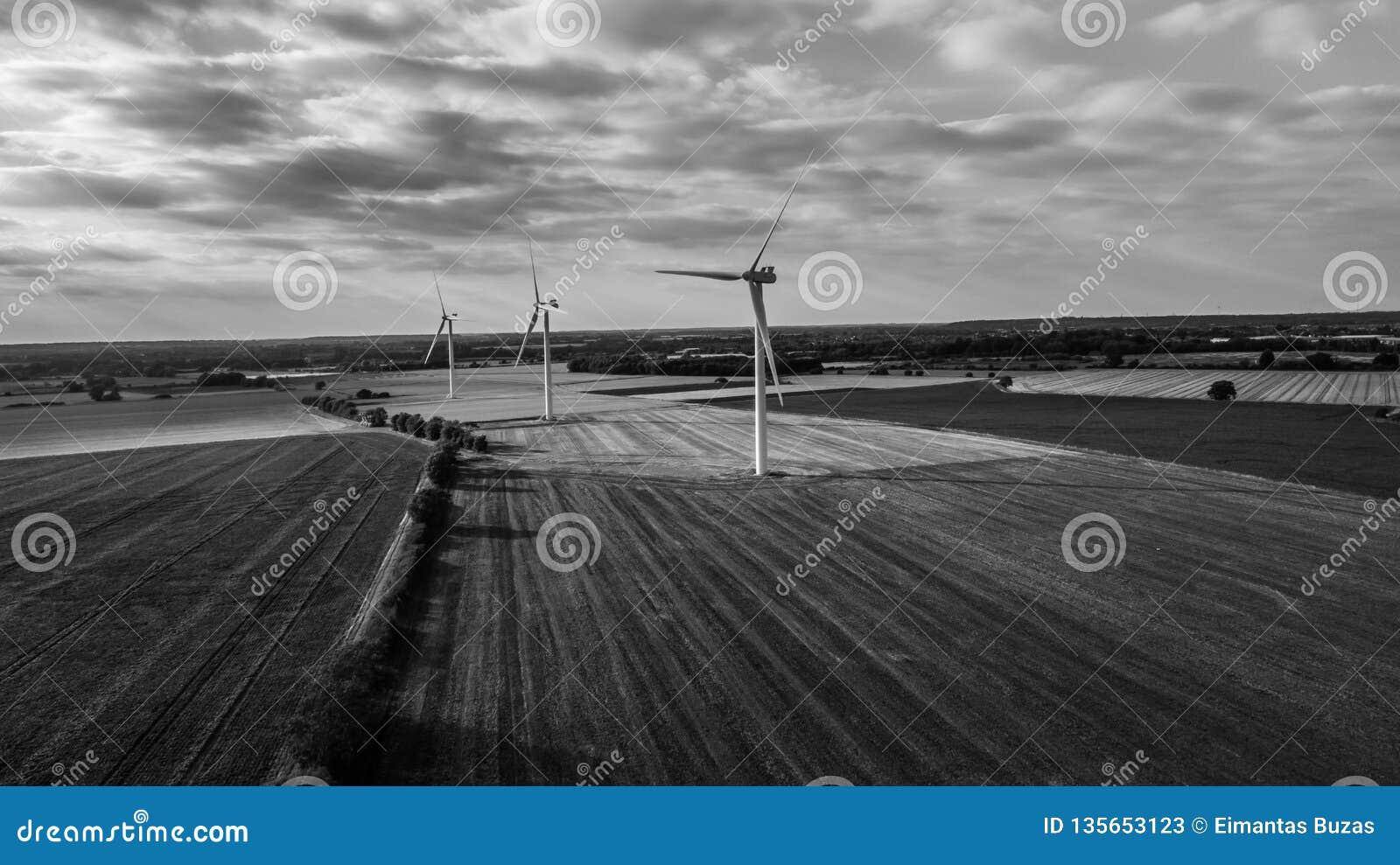 Exploração agrícola de vento do contraste alto em preto e branco