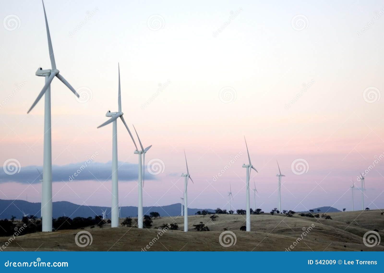Exploração agrícola de vento II