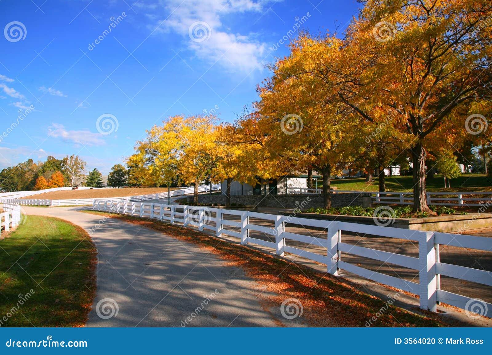 Exploração agrícola do cavalo de Kentucky