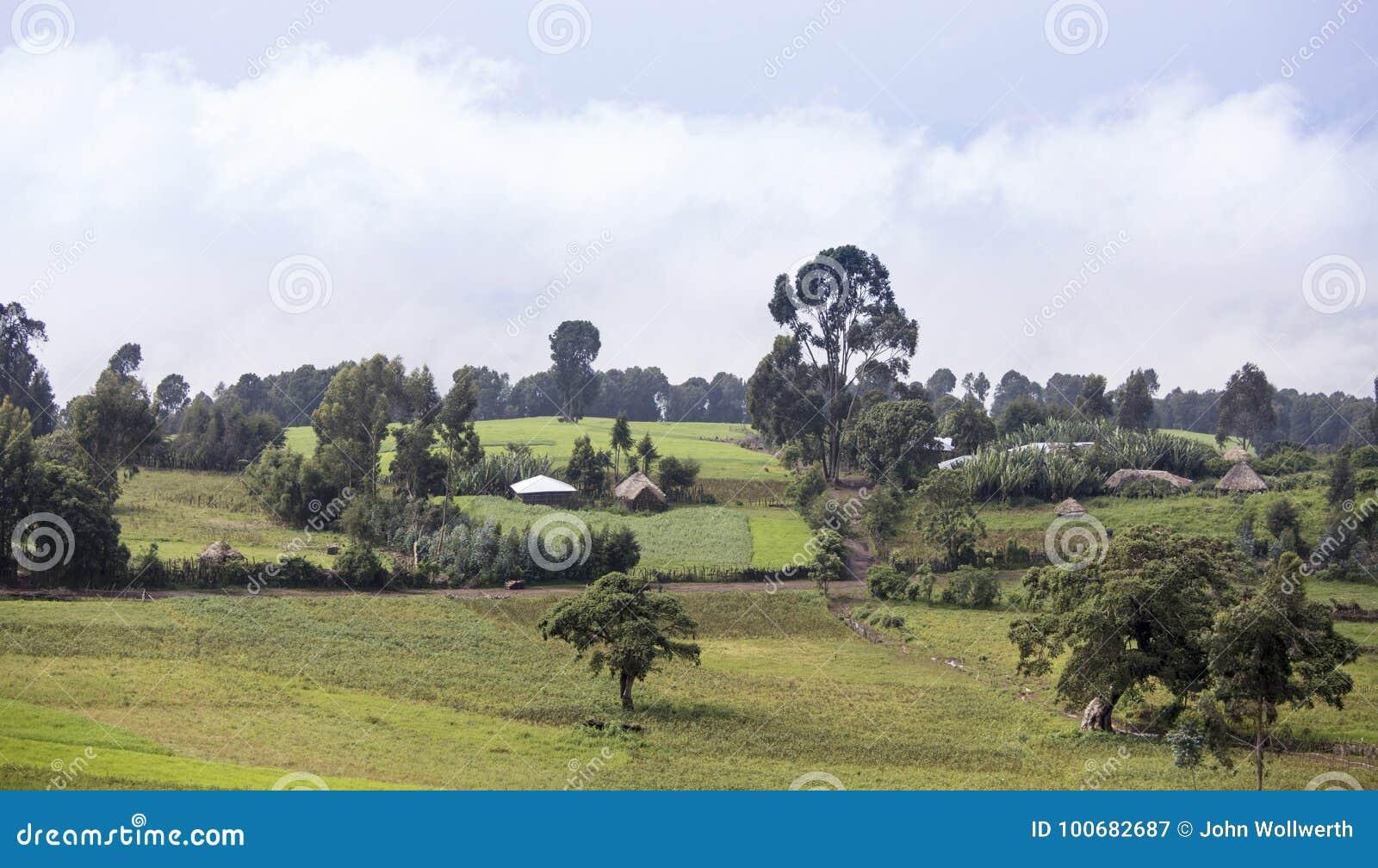 Explorações agrícolas e vila etíopes