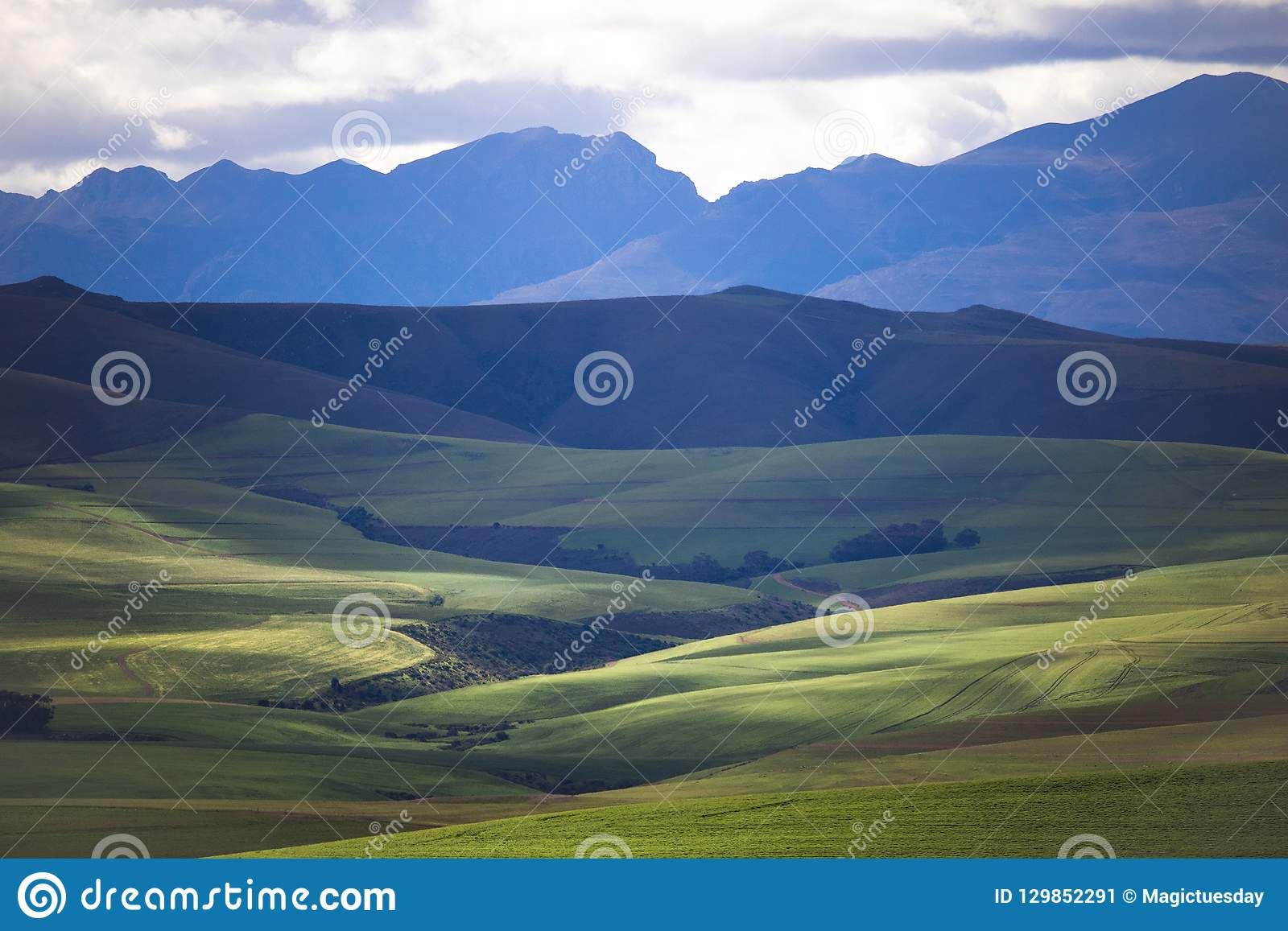 Rolling green agricultural fields with mountains in the background - Caledon, Western Cape - South Africa.