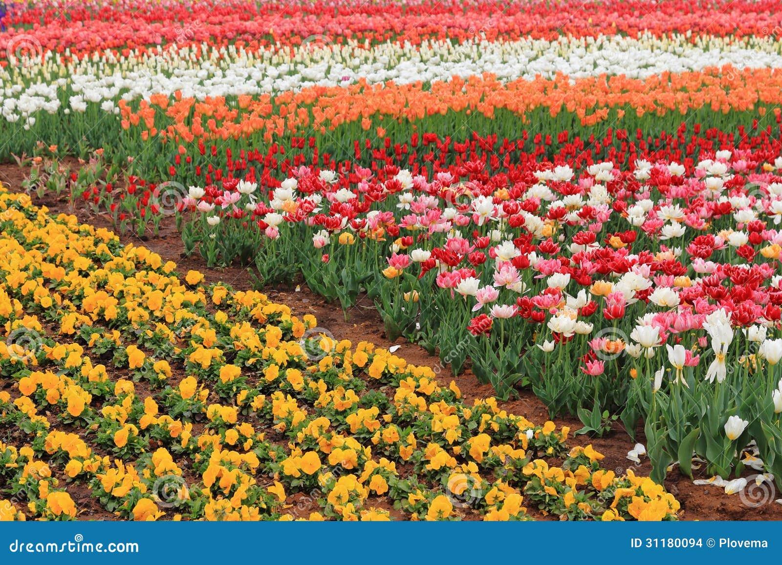 Etonnant Expo Flower Garden
