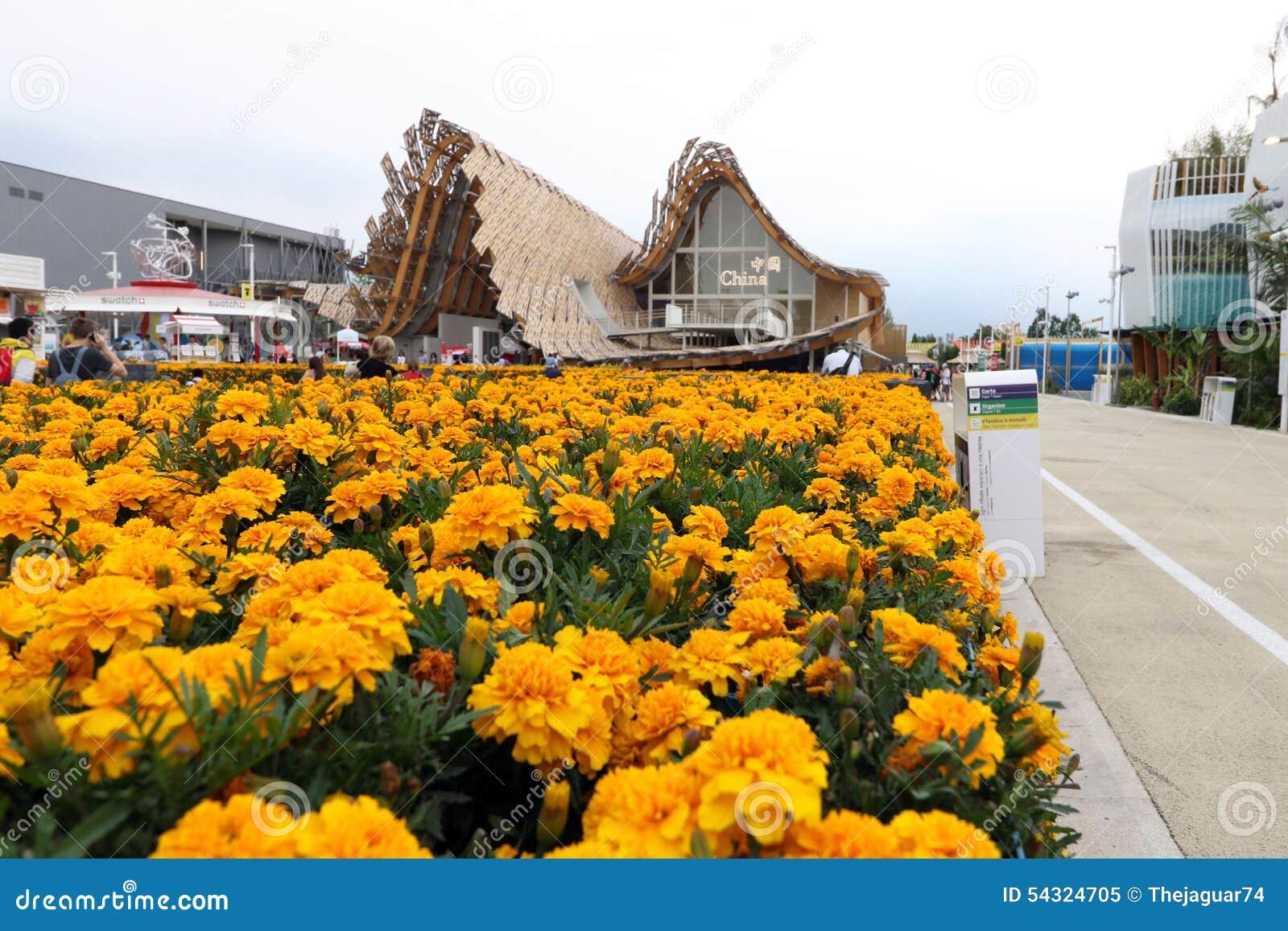 Expo2015 milan, milano