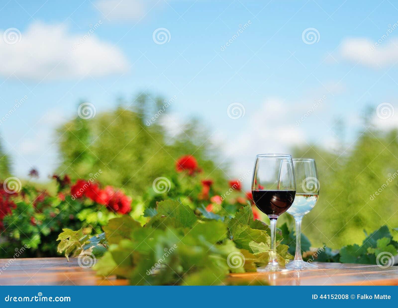Exponeringsglas av rött och vitt vin utomhus
