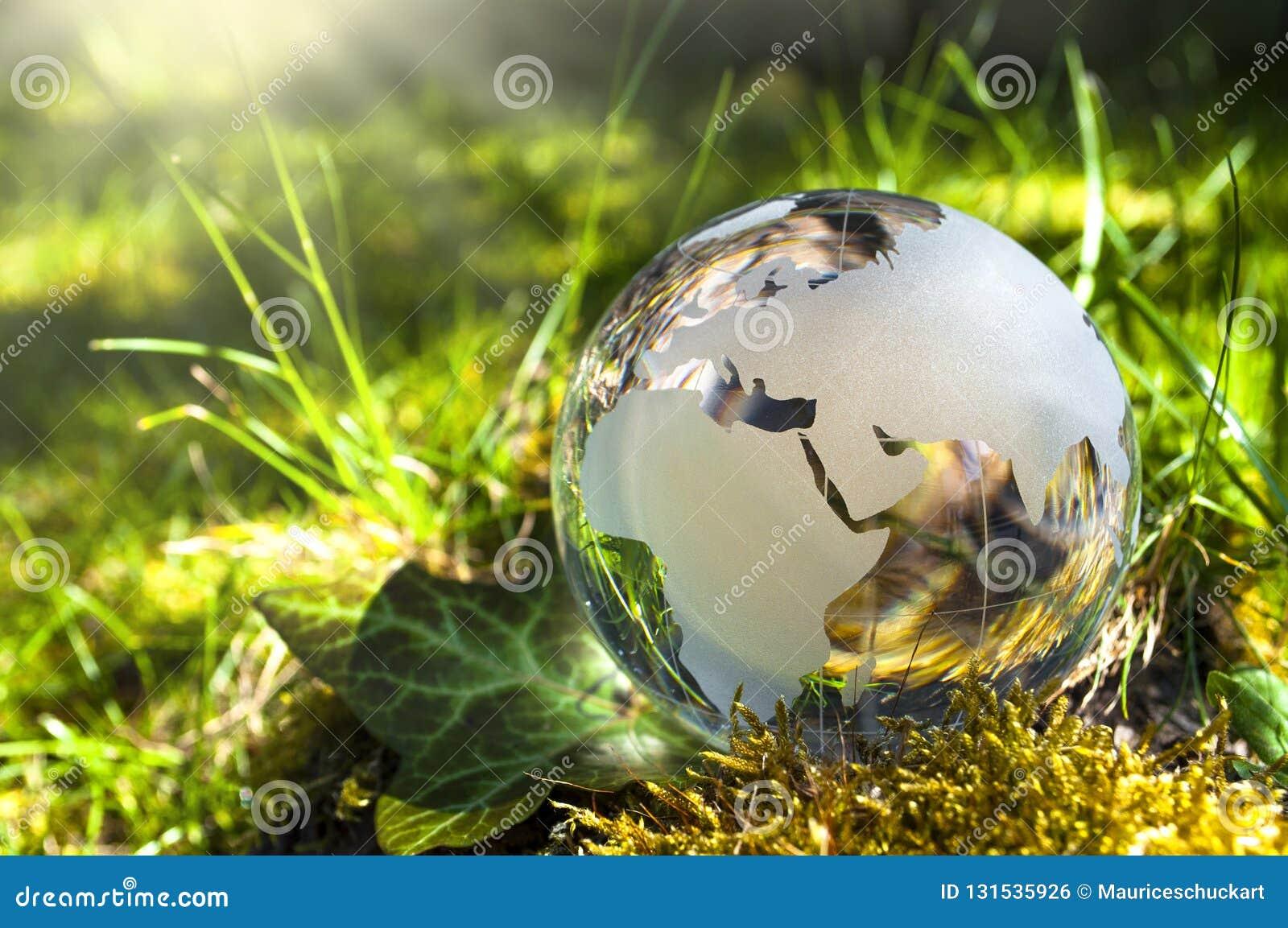 Exponeringsglasjord på gras