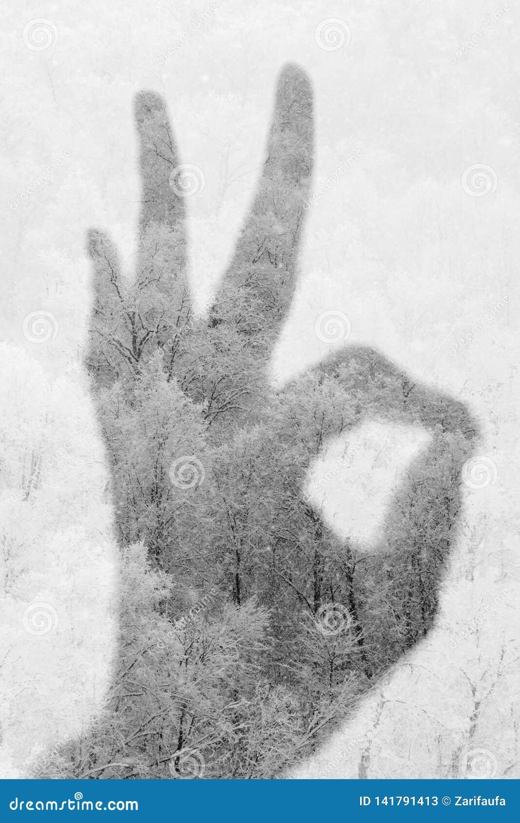Exposição dobro do gesto APROVADO e da floresta nevado