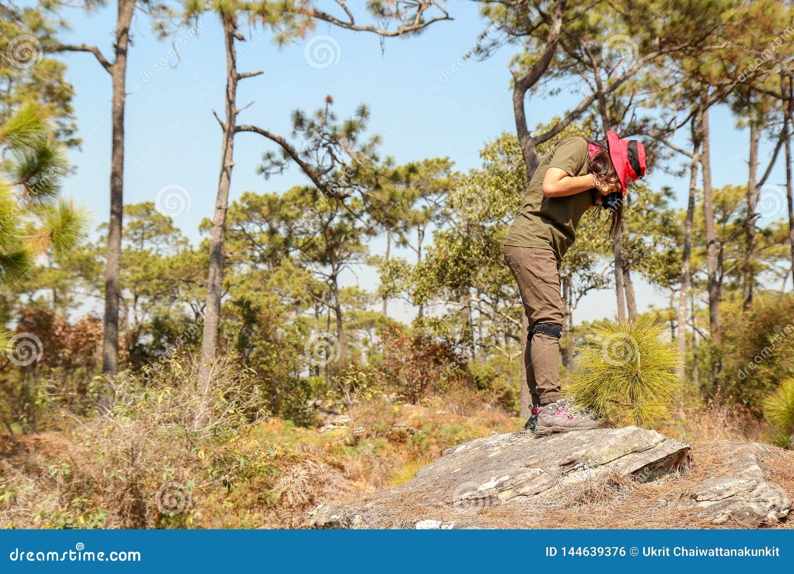 Extérieur de photographe en nature, femme prenant la photo, concept de relaxation de vacances de voyage