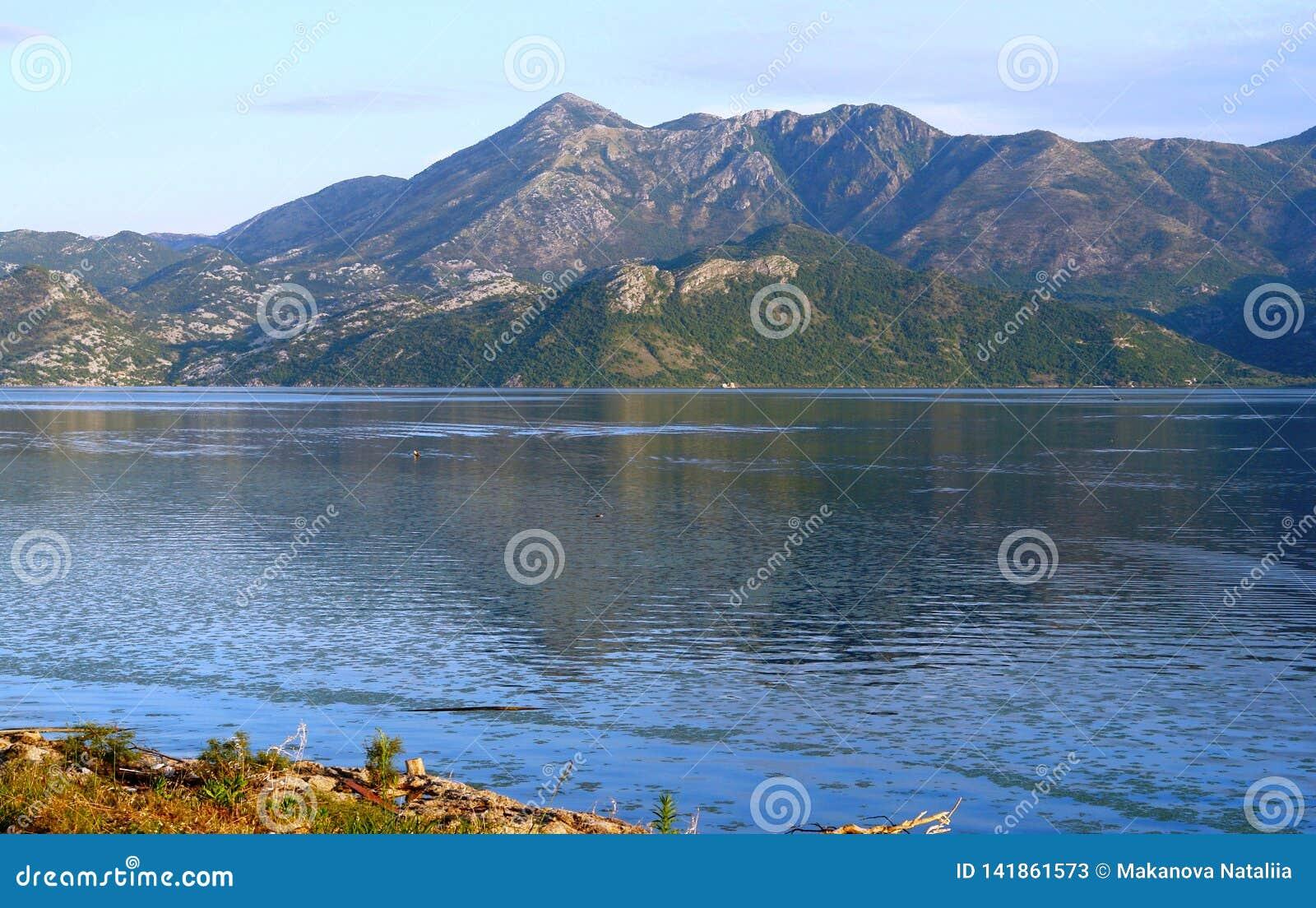 A extensão quieta do lago Skadar, das montanhas de Balcãs e do céu azul